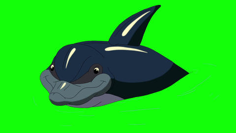 Navy Blue Dolphin in the Water Animation