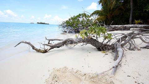 Maldives Sun Island Pack