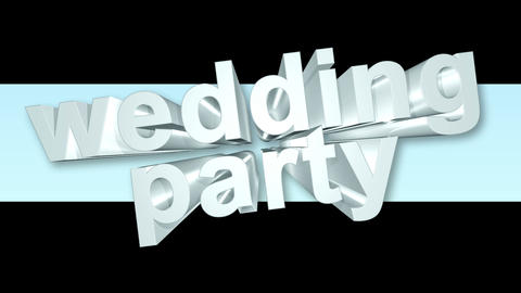 weddingparty Animation