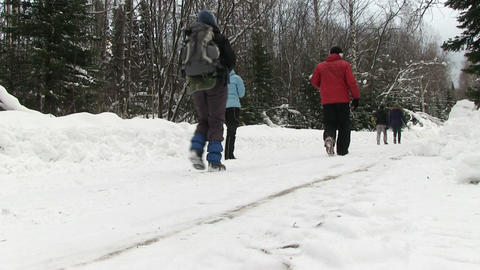 People walking through the winter woods Footage