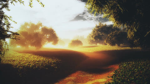 Amazing Natural Wonderland in the Sunset Sunrise 8 Animation