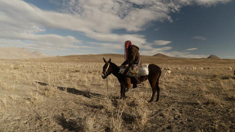 A girl is sitting on a mule stroking it in a Dry mountainous area and posing for Footage