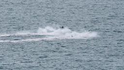 Two fast jetski against sunshine ビデオ