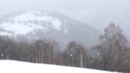Dense snowfall over the mountains with dense forests of deciduous 709 Footage