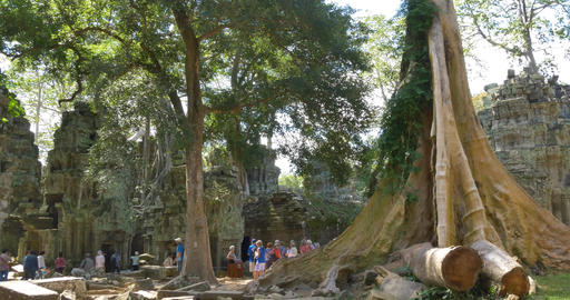 Ta Prohm temple of Angkor Wat Cambodia ancient stone ruin temple Footage