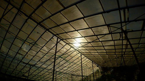 sun shines through the glass roof of the greenhouse divided into sectors Footage