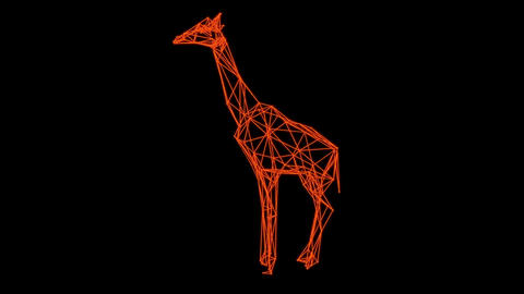 3d rendering - wire frame model of Isolated giraffe Hologram rotate Animation