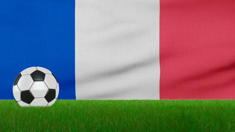 Ball on the france flag Image