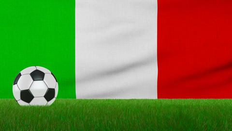 Ball on the italy flag Animation