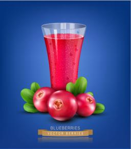 Vector glass cup with juice of cranberries on a blue background Vector