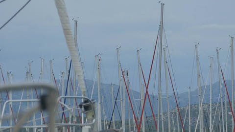 Lots of Yacht Masts Footage