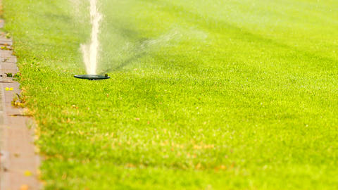 Lawn grass on the football field sprinkles water in summer. Sprinkler Watering a Footage
