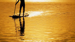 Sup surf on the sunset sky background. Rays of the sun Footage