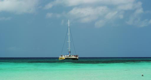 Catamaran in the Green Blue Ocean Footage