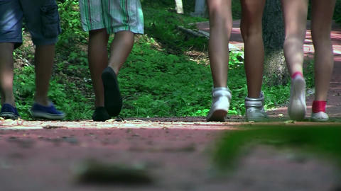 Friends, two boys and two girls, were out for a walk in the park. It's a sunny d Footage