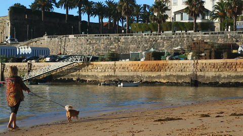 Barefoot woman walking dog on leash along sea coast, stone wharf at background ビデオ
