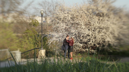 A Date In The Spring 0