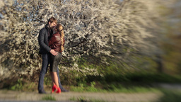 Boy and girl on a romantic date in the spring near flowering tree Footage