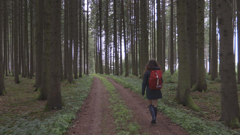 Young woman walk through the forest ビデオ