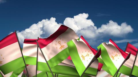 Waving Tajik Flags Animation