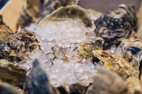 Fresh shell oysters at a fish market stall Foto