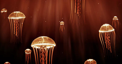 Jellyfish Swimming in Deep Sea 4k Loop Orange Color Scheme Animation