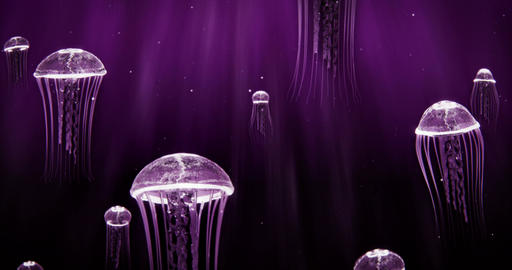 Jellyfish Swimming in Deep Ocean 4k Loop Purple Color Scheme Animation