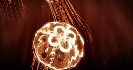 Jellyfish Swimming in 4k Loop (Orange) Videos animados