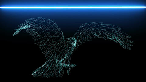 Isolated Low Poly graphic design of Eagle -3d rendering,scan Animation