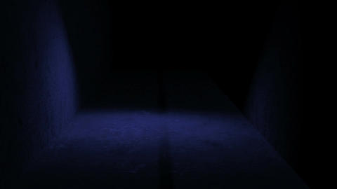 walking in spooky space with low light - Horror scene animation Animation