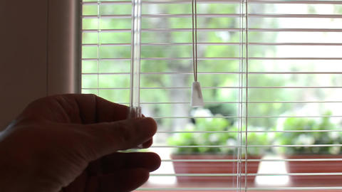 Window venetian blinds close and then open with flowers and blue sky outside Footage