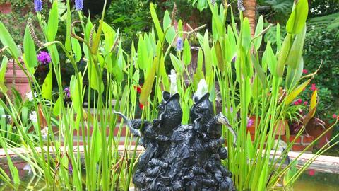 Garden Fountain Stock Video Footage