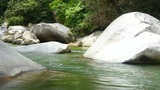 Tropical River Footage