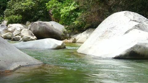 Tropical River Stock Video Footage