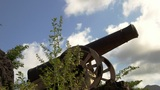 Cannon  09 stock footage