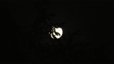 Full moon 01 Stock Video Footage