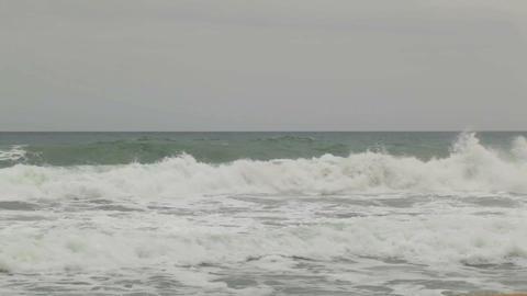 0019 NATURE SEA BCN Stock Video Footage