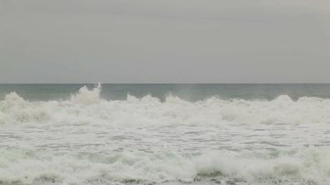 0019 NATURE SEA BCN Footage