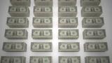 Dollar bills 06 Animation