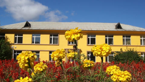 Yellow building and flowers 01 Stock Video Footage
