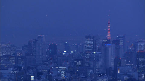 Night view of Tokyo Live Action