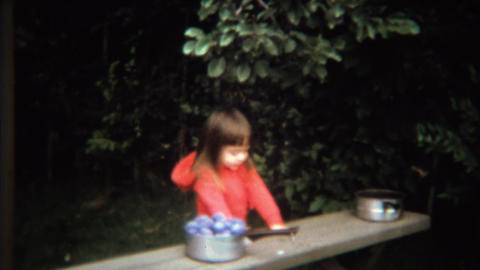 1971: Girl picking plums from tree in kitchen cooking pots Footage