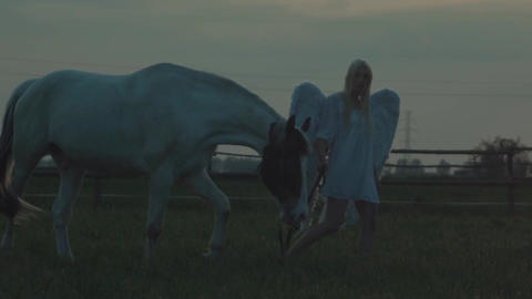 Stunning woman with the majestic horse Live Action