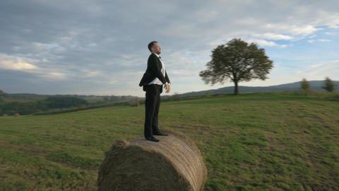 Elegant businessman walking on the corn field Archivo