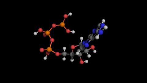 Adenosine Triphospate ball and stick molecule model rotating Animation