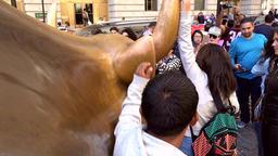 USA New York City Manhattan the neck of Charging Bull on Broadway Image