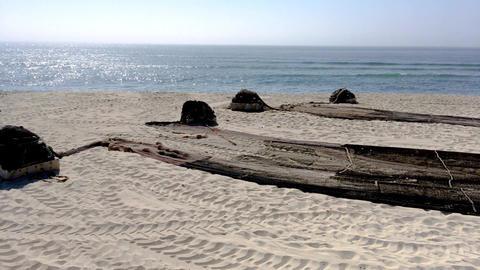 Arte Xavega fishing nets Image
