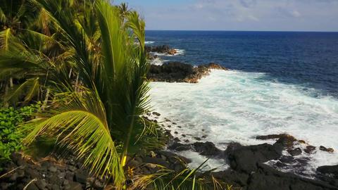 Coastline of Hawaii Footage