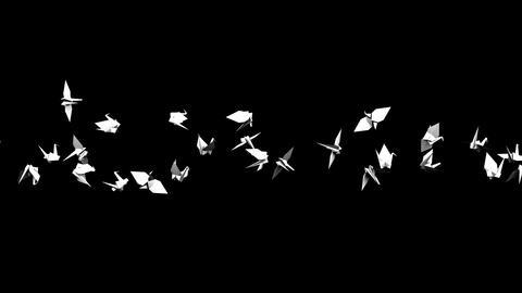 Origami Crane On Black Background CG動画