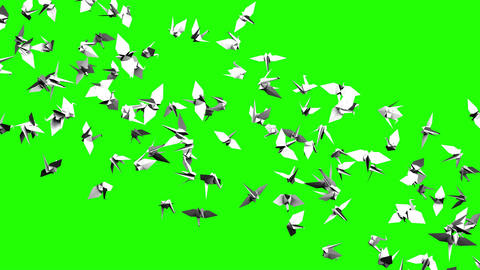 Origami Crane On Green Chroma Key Animation